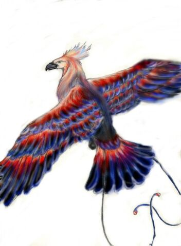 File:Thunderbird prelim.jpg