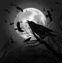 The Raven Mocker Photo-1-