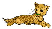 Leopardclaw MC.LC