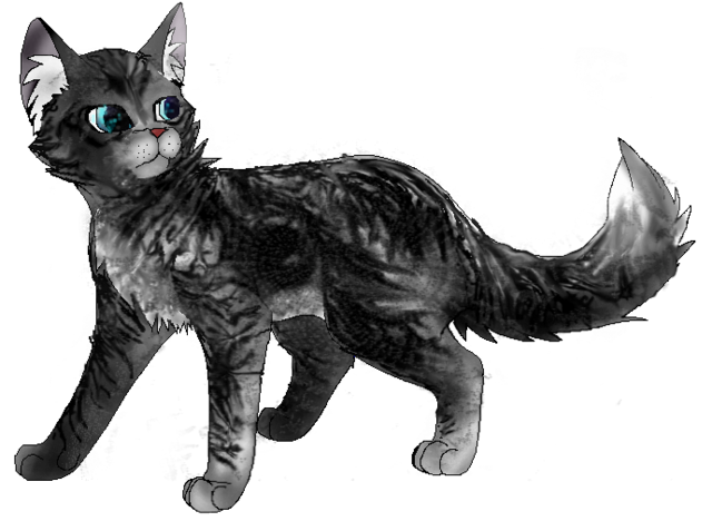 File:Jayfeather.adult.png