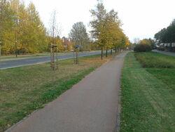 Ścieżka Rosołą (by BartekBD).jpg