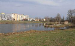 Jeziorko Gocławskie.jpg