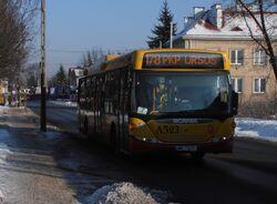 Ryżowa (autobus 178)