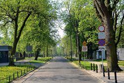 Ulica Jazdów