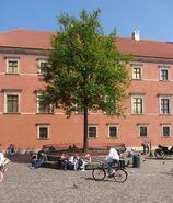 Plac Zamkowy (topola)