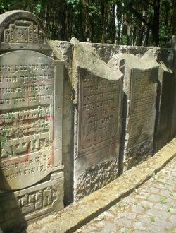 Cmentarz Żydowski na Bródnie (aleja główna 3).JPG