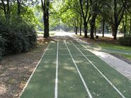 Park Traugutta 3