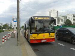 195 (Natolin Północny)
