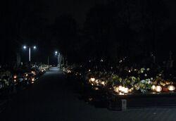 Cmentarz w Zerzniu (nocą).JPG