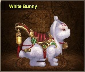 White bunny - divosaga
