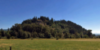 Fell Hill (King County)