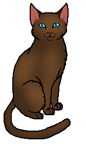 File:Solid Cat 6.png
