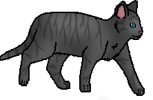 File:Tabby 8.png
