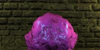 Violet fungus