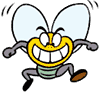 File:Fly SML.png