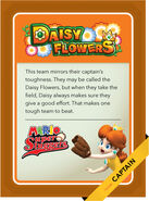 MSSC Daisy Flowers B by Cheersoup