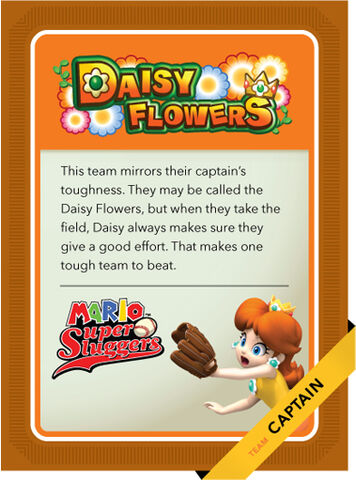 File:MSSC Daisy Flowers B by Cheersoup.jpg