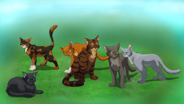 File:Cats6.jpg