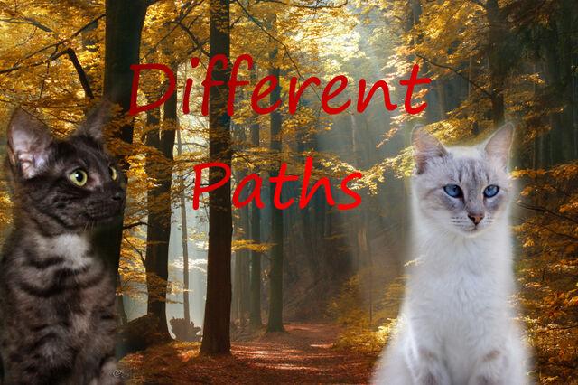 File:Different Paths.jpg