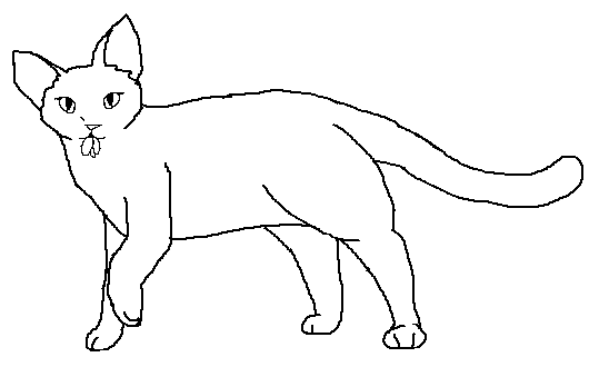 File:Short-haired female Medicne Cat blank.png