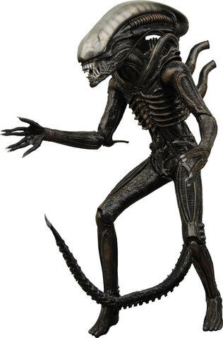 File:Alien3.jpg