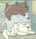 Dogstack