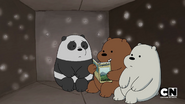 S02 Baby Bears on a Plane (12)