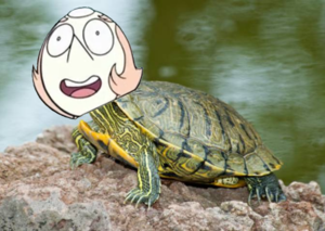 File:Purtle-2.png