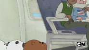 S02 Baby Bears on a Plane (31)