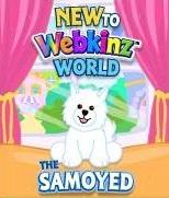 Samoyed Dog New