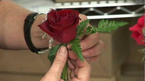 Wedding Flowers & Floral Arrangements How to Make a Boutonniere for a Wedding or a Prom