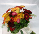 Fall & Winter Bouquets