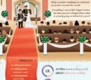World of Weddings Infographic