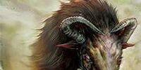 Behemoth-Rind