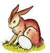 Hase.png