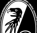 2014-15 SC Freiburg Away