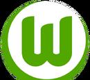 2014-15 VfL Wolfsburg Home