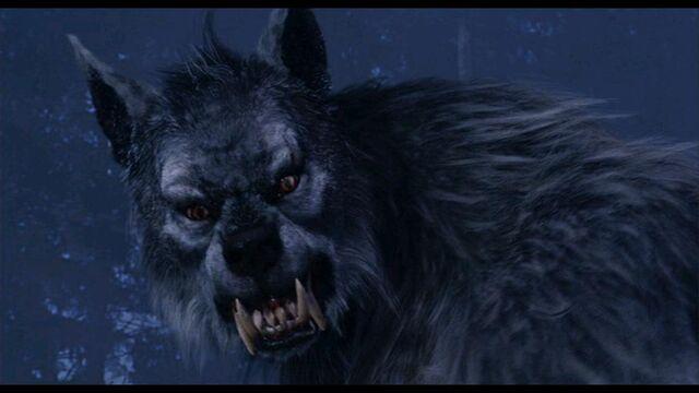 File:The Wolfman from Van Helsing.jpg