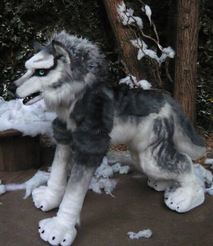File:Wolf husky lily.jpg