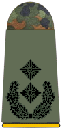 File:Army Lieutenant Colonel.png