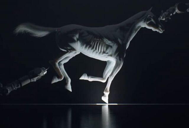 File:Horse Printing - Crop 2.jpg