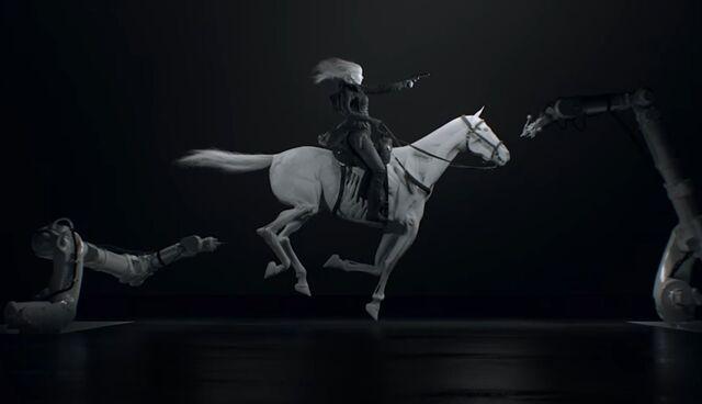 File:Horse & Rider.JPG