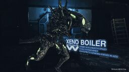 Xeno Boiler