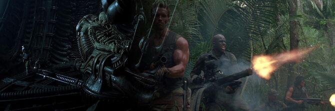 Alien (franchise)