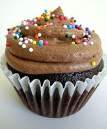 ChocoCupCakeSprinkles