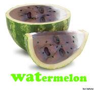 Watermelon by katysz by katysz-d6id10y