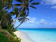 Hawaiian beach 7