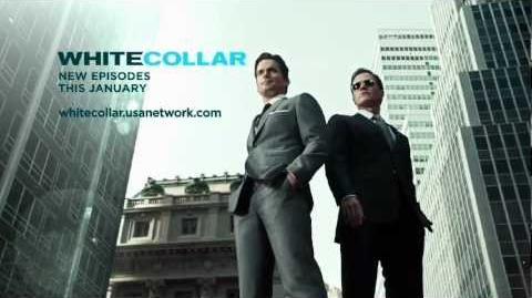 White Collar, Season 4 - Back This January
