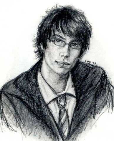 File:Young James Potter.jpg