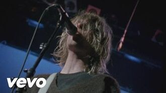 Nirvana - Territorial Pissings (Live At The Paramount 1991)
